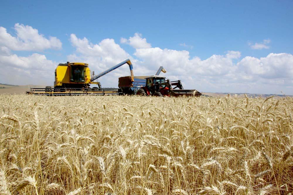"""""""Empiricamente já se tinha a convicção de que o agronegócio tem grande importância para a economia do Estado do Paraná"""", disse o secretário estadual da Agricultura e do Abastecimento, Norberto Ortigara"""