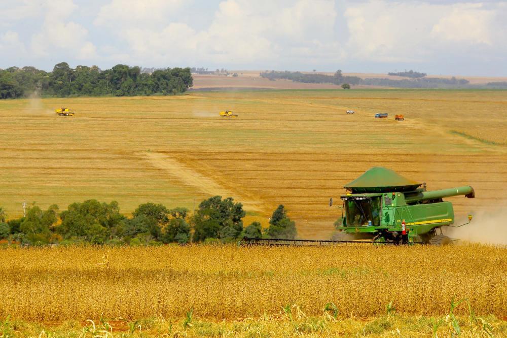Relatório da Secretaria da Agricultura comprova uma safra de soja recorde no Estado, próxima a 20,7 milhões de toneladas