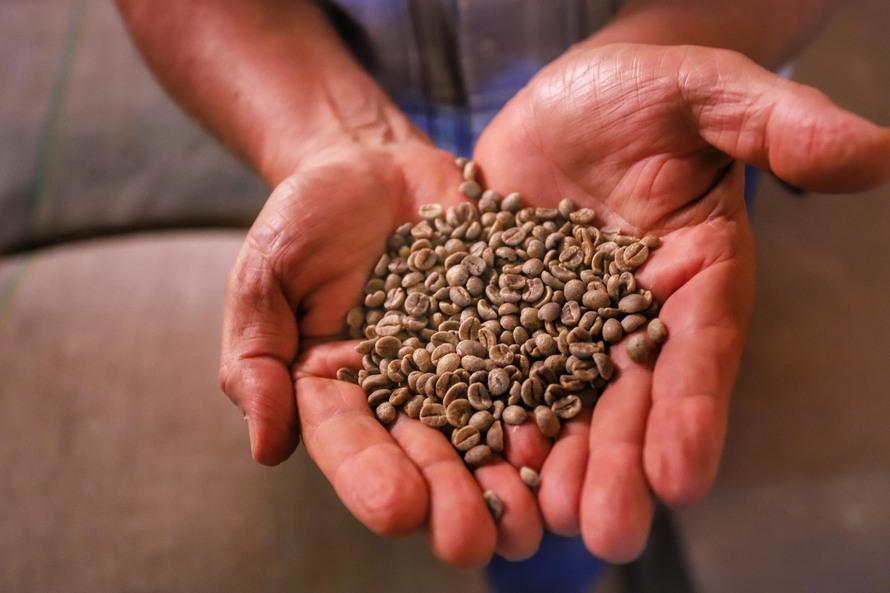 """""""O agronegócio não para, e o concurso é um forte estimulo para continuar melhorando a qualidade da produção"""", diz o gerente da Câmara Setorial do Café do Paraná, Francisco Barbosa Lima"""