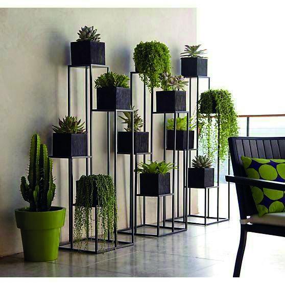 Márcia Erthal diz que plantas são verdadeiros trunfos na decoração!