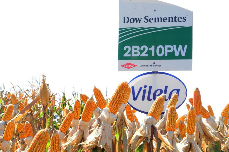 Dia de Campo da empresa Vilela e Vilela destaca agricultura de precisão