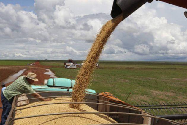'Efeito greve' sobre preço da soja perde força