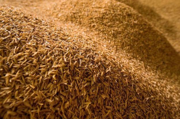 Moinhos no PR reduzem processamento de trigo com bloqueio em estradas